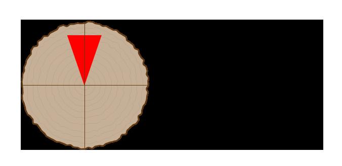 薪を割るときは中心より少し外側、印の部分に初めに斧を打ち込みます。